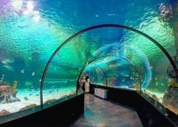 Isfahan-Aquarium-IsfahanInfo